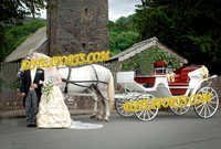 Indian Wedding White Victoria Carriage