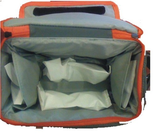 Vaccine Carry Bags