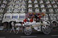 Indian Wedding Silver Carved Baghi