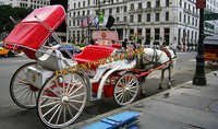 Beautiful English Wedding Carriages