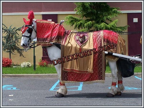 Wedding Red Designer Horse Costume