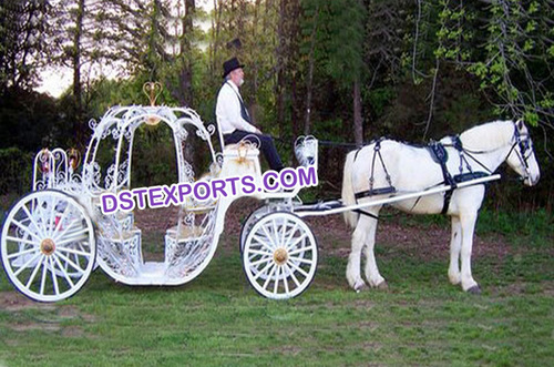 Tourist Cinderella Carriages