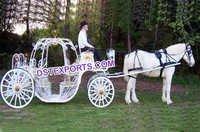 Tourist Cinderella Carriages