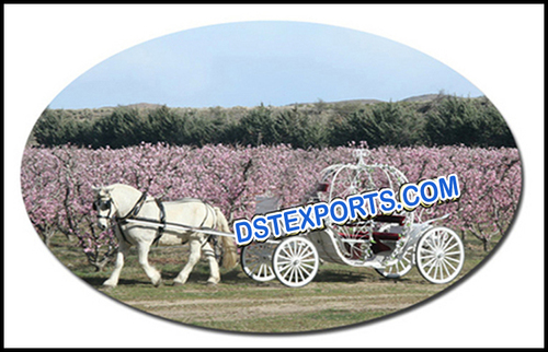 Spring Field Cinderala Carriage