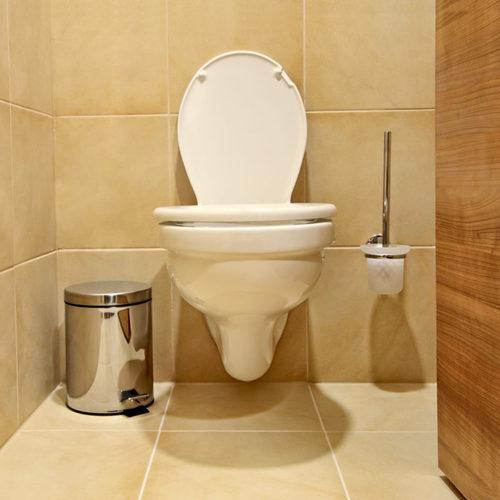 Toilet Brush & Holder (Wall Mounted)