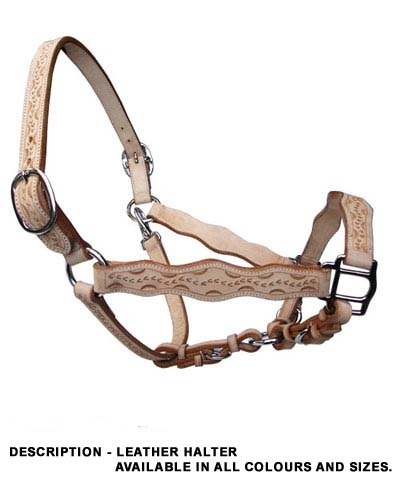 Halters for horses