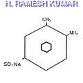 6-Nitro-2-Amino Phenol- 4-Sulfonic acid (6-NAPSA)