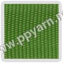 Green Filament Webbing