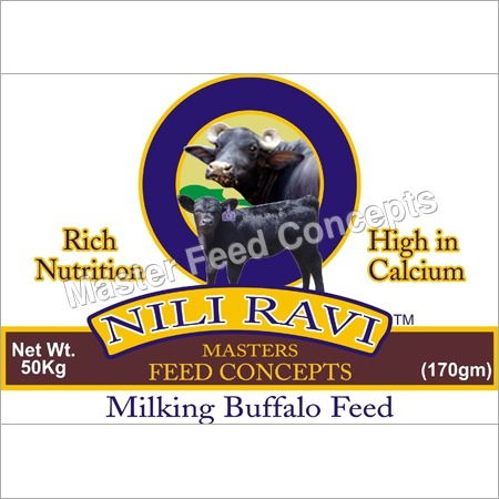 Nili Ravi Buffalo Feed