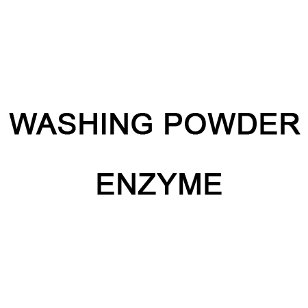 Washing Powder Enzyme