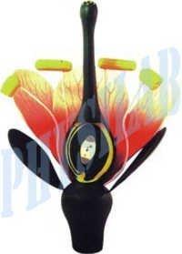Dicot Flower Model