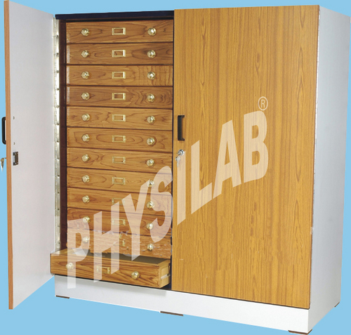 Insect Showcase Cabinet Large