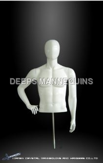 Male Bust Mannequins