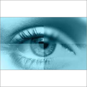 Monthly Disposable Contact lenses