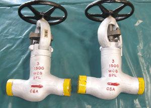 High Pressure Globe valve 3