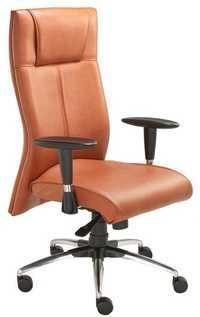 Funky Executive Chair