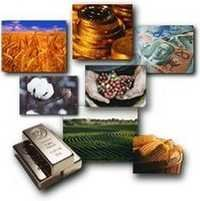 Commodities Consulting