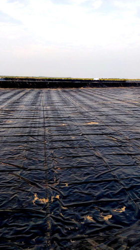 LDPE Geomembrane Sheets