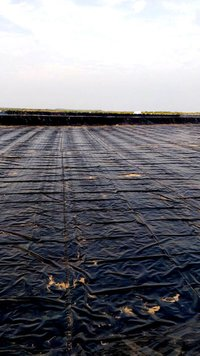 Geo-membrane Films