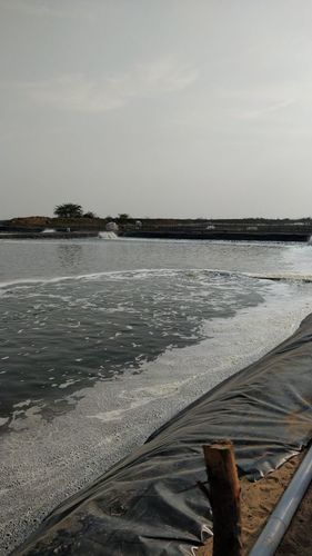 Hdpe Pond Sheets