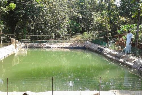 Pond Lining Film