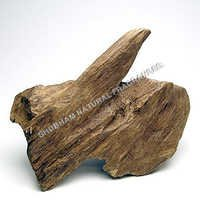 Agarwood Oil (Oud)