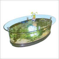 Table Fish Aquarium