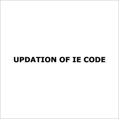 Import Export Code Updation Services