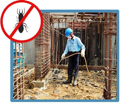 Pre Construction Anti Termite Treatment