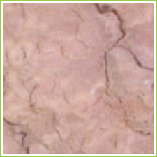 Indian Marble Floor Slabs