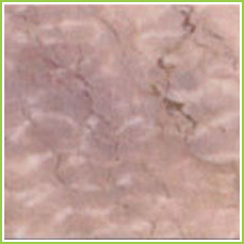 Indian Marble Slabs