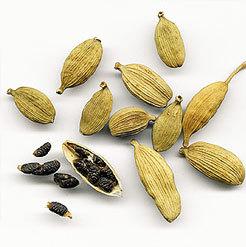 Essential Cardamom Seed Oil