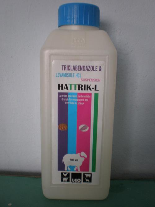 HATTRIK-L