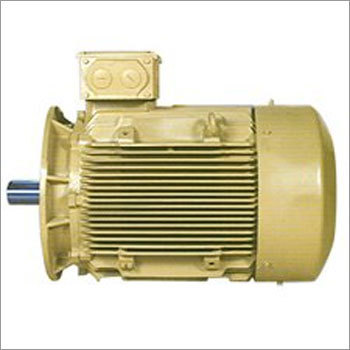 Crane and Hoist Duty Squirrel Cage Induction Motor