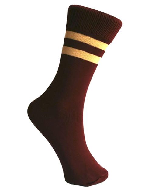 Border Stripes School Socks