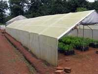 Green House UV Flims