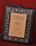 Fujitsu  First Prize award