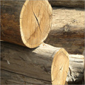 Sheesham Wood Products