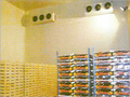 Insulated Sandwich Wall Panels