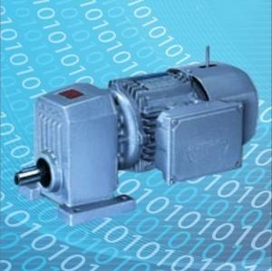 Single Reduction Helical Gear Motor