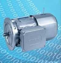 Three Phase Motor
