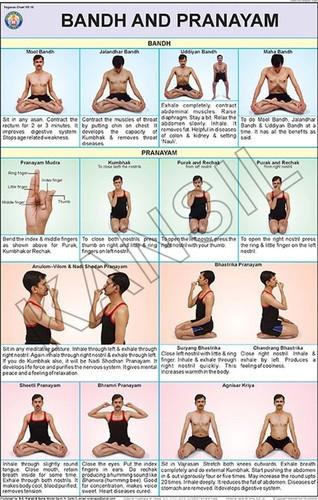 Yogasana Charts