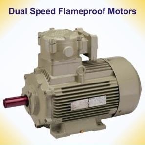 Dual Speed Flameproof Motors