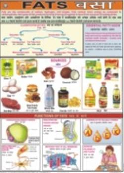 Fats Chart