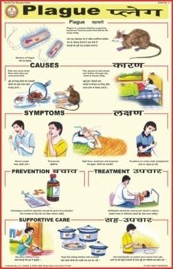 Plague Chart