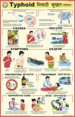 Typhoid Chart
