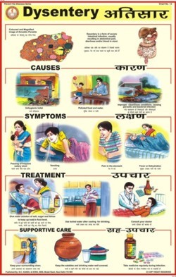 Prevent Diseases Charts