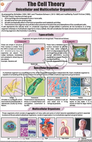 The Cell Theory Chart