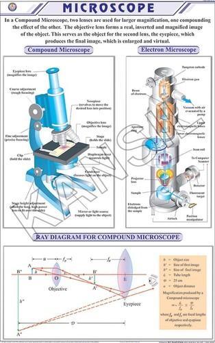 Microscope Chart