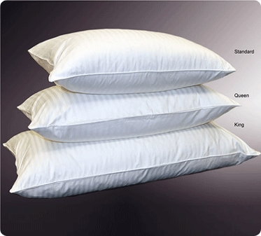 Standard Down Feather Cushion